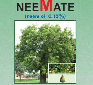 Read more about the article NEE-MATE